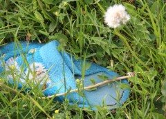 Ein alter Latschen im Gras