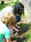 Andrea und Julias Tochter beim Pflanzen im St. Simeonis-Vorgarten
