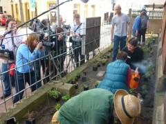 Presseleute fotografieren die ersten Pflanzaktivitäten. Ein WDR-Team filmt.