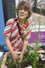 Heide bepflanzt einen Kasten