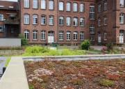 Die alte Schule von der Videbullenstraße aus gesehen