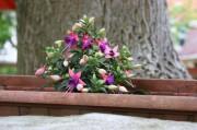 Blumengesteck im Freien
