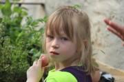 Alina beim Bepflanzen des Kastens