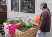 «Speiseraum» 3:  Alina und Ralf giessen die jungen Pflanzen