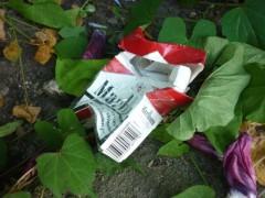 Leere Zigarettenschachtel im Beet