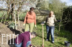 Gemeinschaftliches Gärtnern